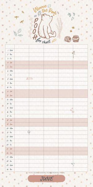 Winnie The Pooh 2022 Family Organiser Wall Calendar INSERTS